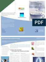 Newsletter-reikistas en La Red