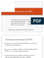Transcripción de ARN