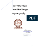 A New Method for Hierarchical Image Steganography