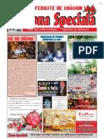 Zona speciala_308