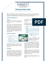 Working Underwater