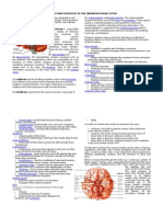 Anatomy and Physiology of the Cerebrovascular System