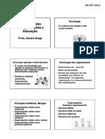 Sociologia Das Organizacoes e Educacao (Revisao) - Sandra Braga[1]