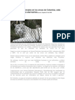 El Maltrato de Animales en Los Circos de Colombia