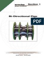 Bi Directional