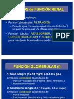 Estudios de Funcion Renal