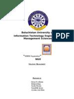 Strategic Analysis of an Organization