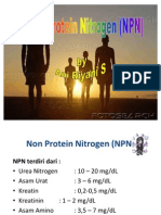 Presentation NPN STABA