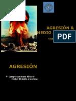 AGRESIÓN & AMBIENTE