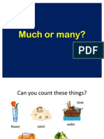 13681_much or Many Ppt (1)