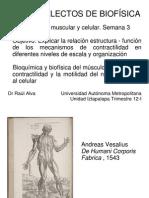 Contractilidad muscular y celular. Bioquímica y biofísica del músculo. Semana 3