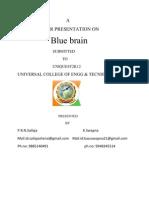 bluebrain UNIV