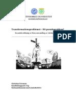 Transformationsproblemet- ett pseudoproblem_