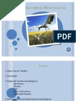 powerpointrecursosbiologicos