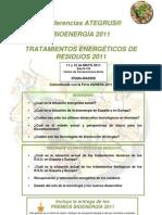 11_BIOENERGIA_programa