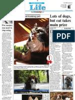 Daily Freeman Pets 2012