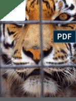 Captivity Industry