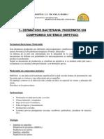 07-Piodermitis-2011-p47-49