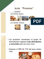 Biomoléculas - Proteínas