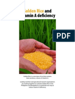 Golden Rice Project Brief 2012