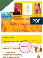 Pielonefrítis Crónica