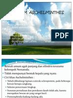 38692972-PHYLLUM-ASCHELMINTHES