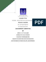 M12Mae Report - Hypermesh