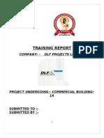 Final Training Report