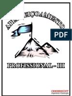 Aperfeiçoamento Profissional 3 Edição