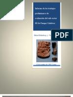 Informe de los trabajos preliminares de evaluación del sub-sector III de Pampa Culebras