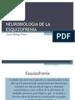 Neurobiologia de La Esquizofrenia[1]