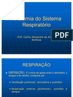 Anatomia Do Sistema Respiratorio