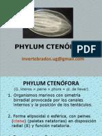 FHYLUM CTENÓFORA