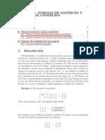 Normas matriciales y número de condición