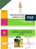 Psicopatología de la conducta motora