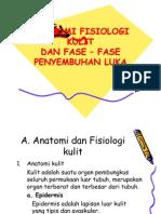 Anatomi Fisiologi Kulit & Fase Penyembuhan Luka
