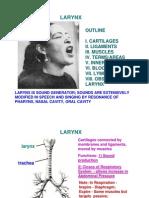 LarynxLectureff