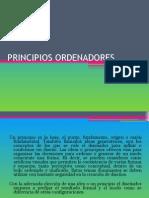 PRINCIPIOS ORDENADORES