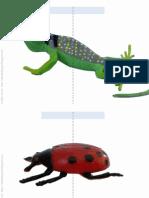 Animales raros / Funny animals / Lustige Tiere