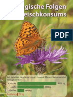 Oekoschrift12 Web