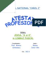 Xsi0-Atestat-informatica-2005