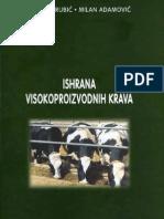 Ishrana Visokoproizvodnih Krava Grubic i Adamovic