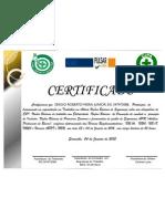 Certificado Pulsar