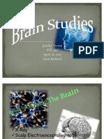 Brain Studies - PSY 240