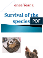 Science Year 5 Survival of Species