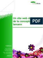 Un Site Web de Succes de La Conceptualizare La Lansare