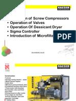 Kaeser Compressor and Valve (of)-11
