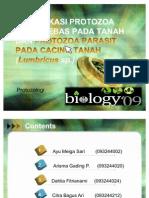 Presentasi protozoologi