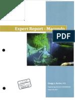 Perkin Expert Report