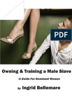 Owning and Training a Male Slave
